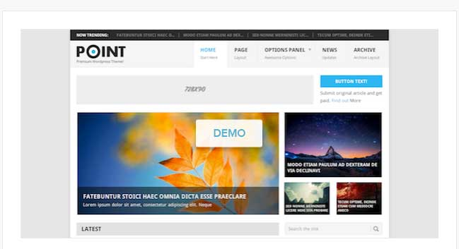 point free wordpress theme
