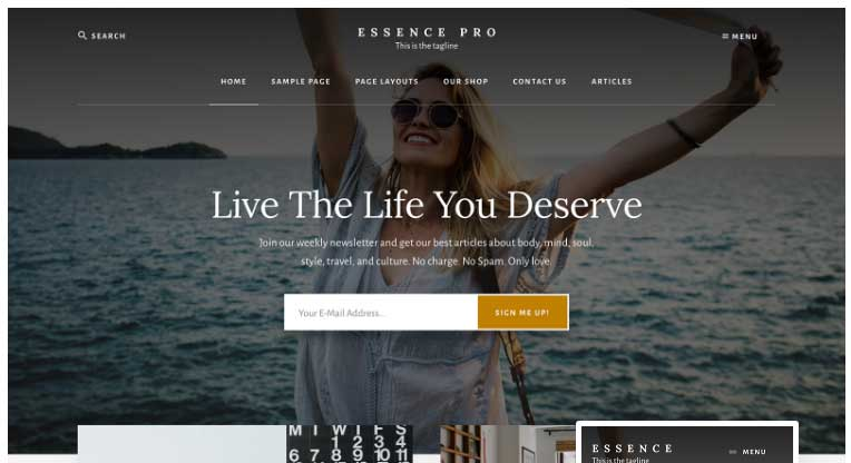 essence pro wordpress theme